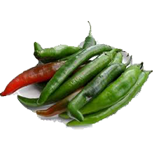 Small Green Chilli
